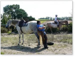 Les chevaux de Hantayo